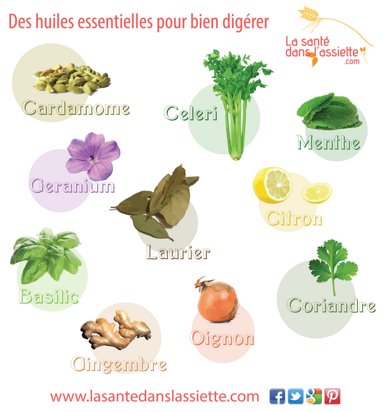 huiles-essentielles-digestion