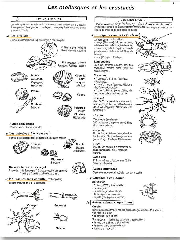 les mollusques et crustaces