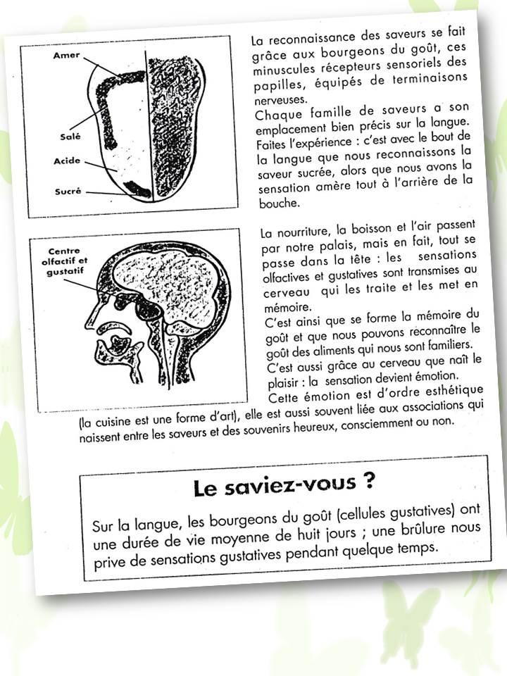 mécanismes du gout
